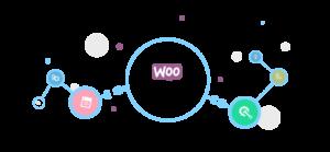 woocommerce plugin development services